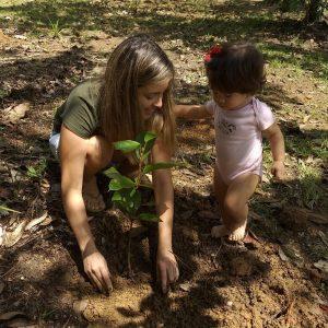 plantando uma árvore na amazônia