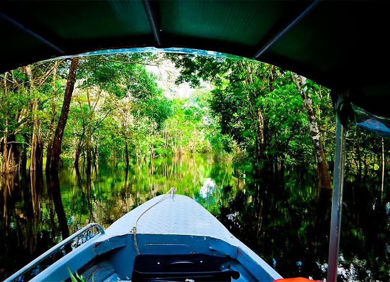 o novo normal e o turismo na Amazônia