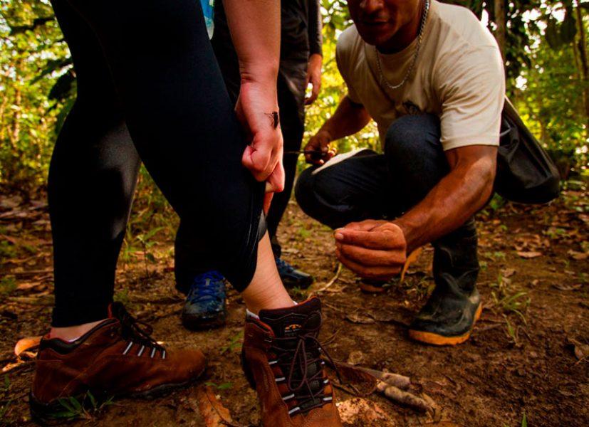 amazon-turtle-lodge-pacotes-survival